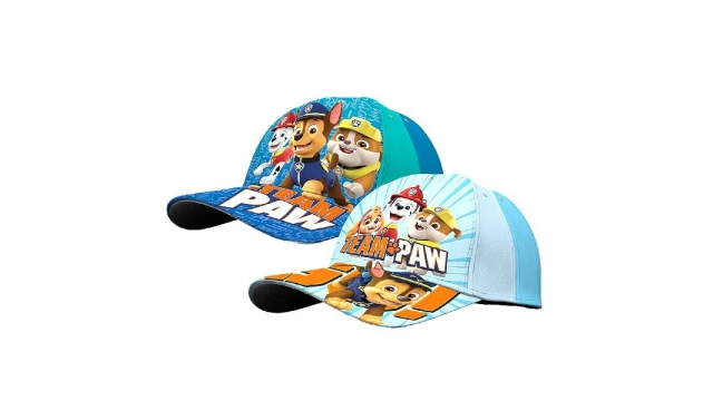 Paw Patrol Pet Assorti