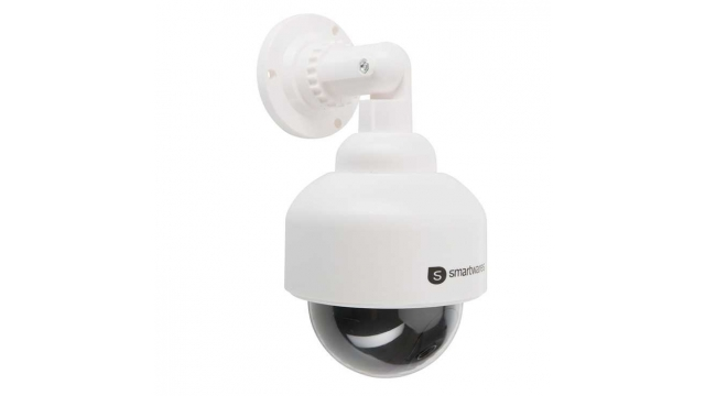 Smartwares CS88DFR Dummy Dome Camera Zwart/Wit