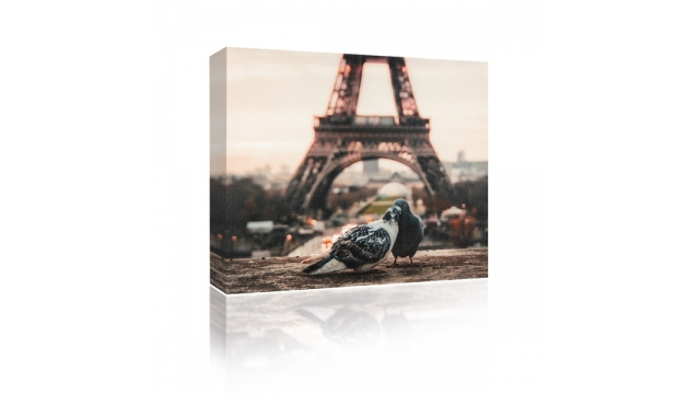 Sound Art Canvas + Bluetooth Speaker Pigeons And Eiffel Tower