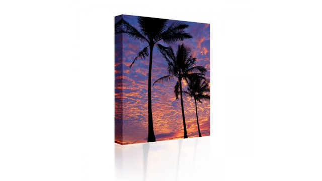 Sound Art Canvas + Bluetooth Speaker Palm Trees At Sunset